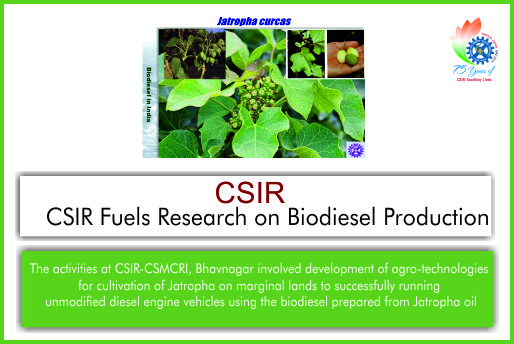 Csir Fuels Research On Biodiesel Production  Mygov Blogs