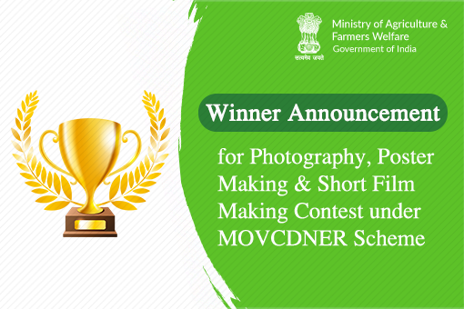 Winner announcement for Photography, Poster Making and Short Film